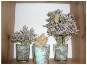 Plantes de baie pour décorer la chambre :-)